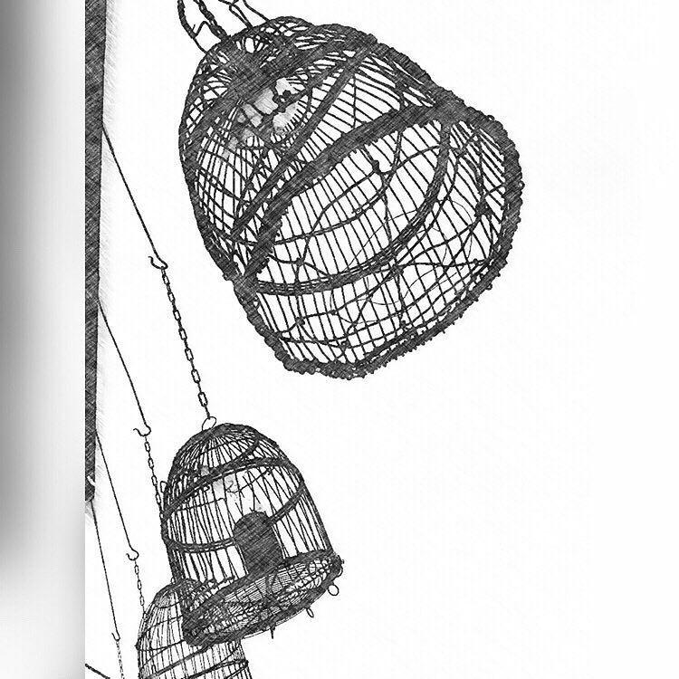 Vogelkooitjes in de torenkamer. Kasteel Groot Buggenum. #kasteel #leudal #heythuysen #grathem #super_holland #igholland #wonderful_holland #superhubs #dutch_connextion #ig_nederland #igersholland #holland_photolovers #picture_to_keep #limburg