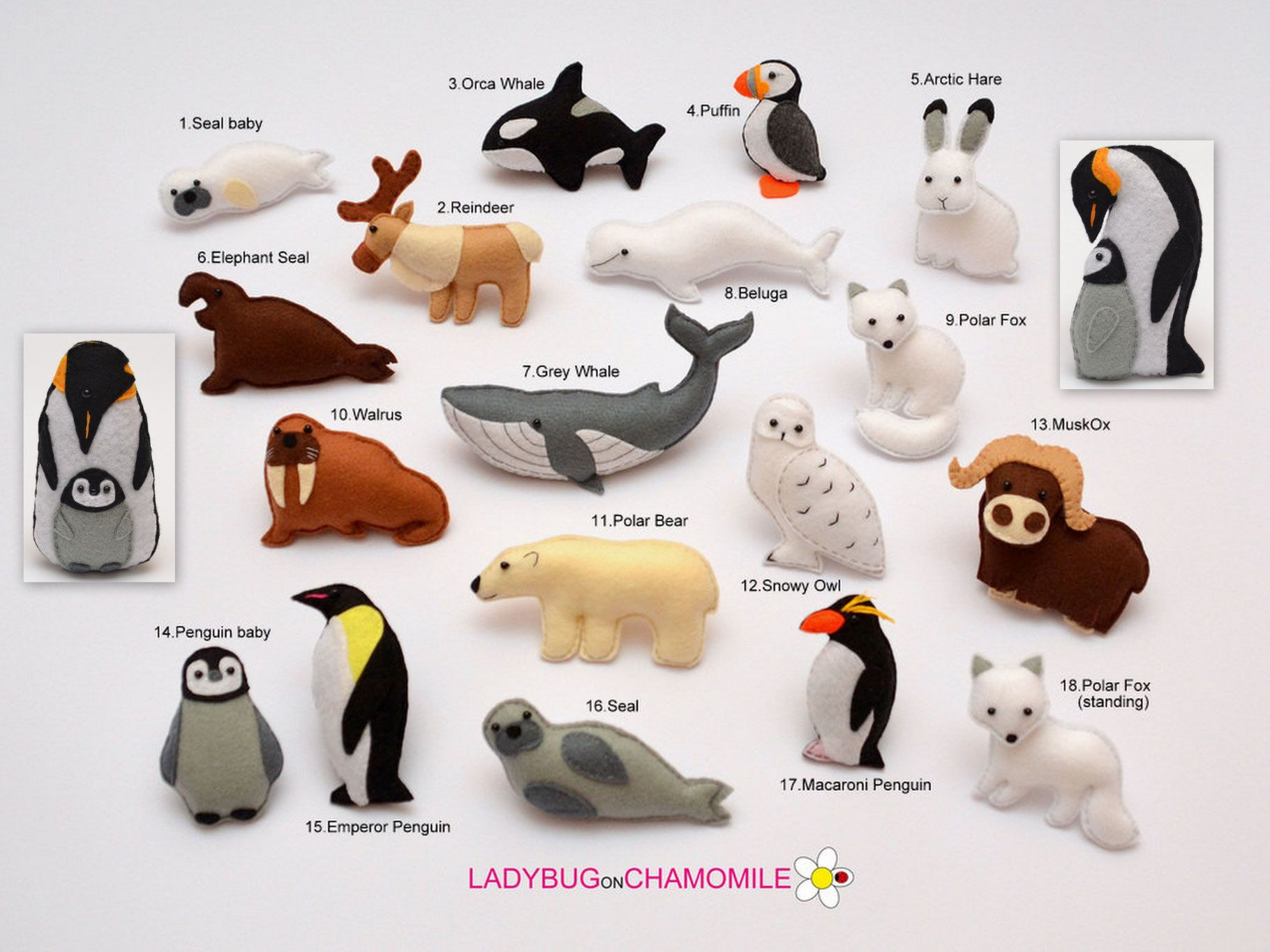 Arctic Animals Rock Hopper Penguin Emperor Penguin Harp Seal Orca Whale Elephant Seal
