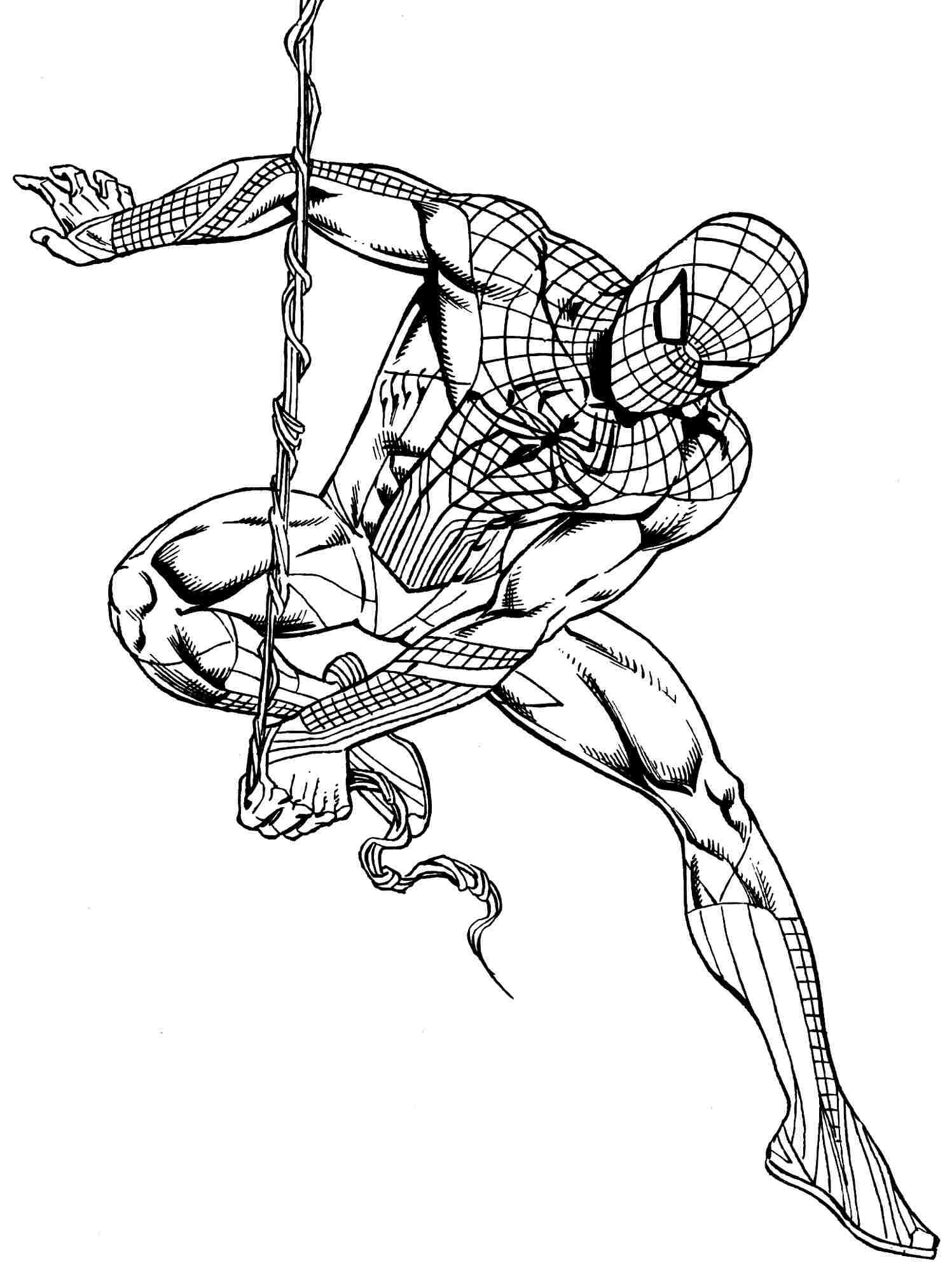 Spiderman On Rope Superhero Coloring Pages Avengers Coloring