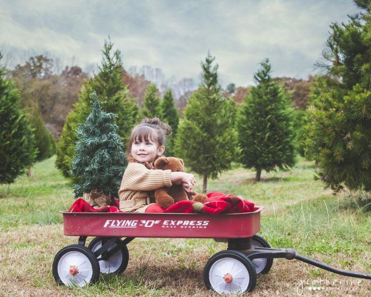 Christmas Tree Farm Portraits Greenville Sc Children Christmas Tree Farm Christmas Pictures Tree Farms