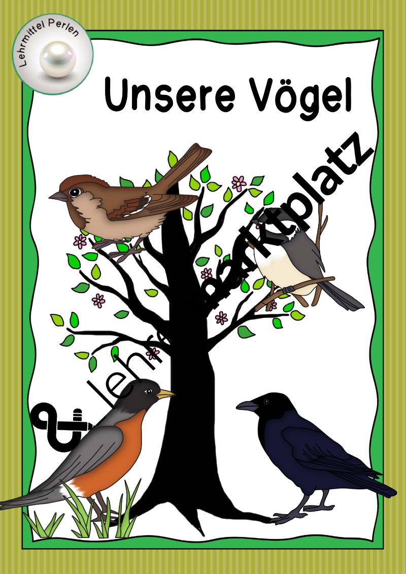 unsere vögel  einfache version  unterrichtsmaterial