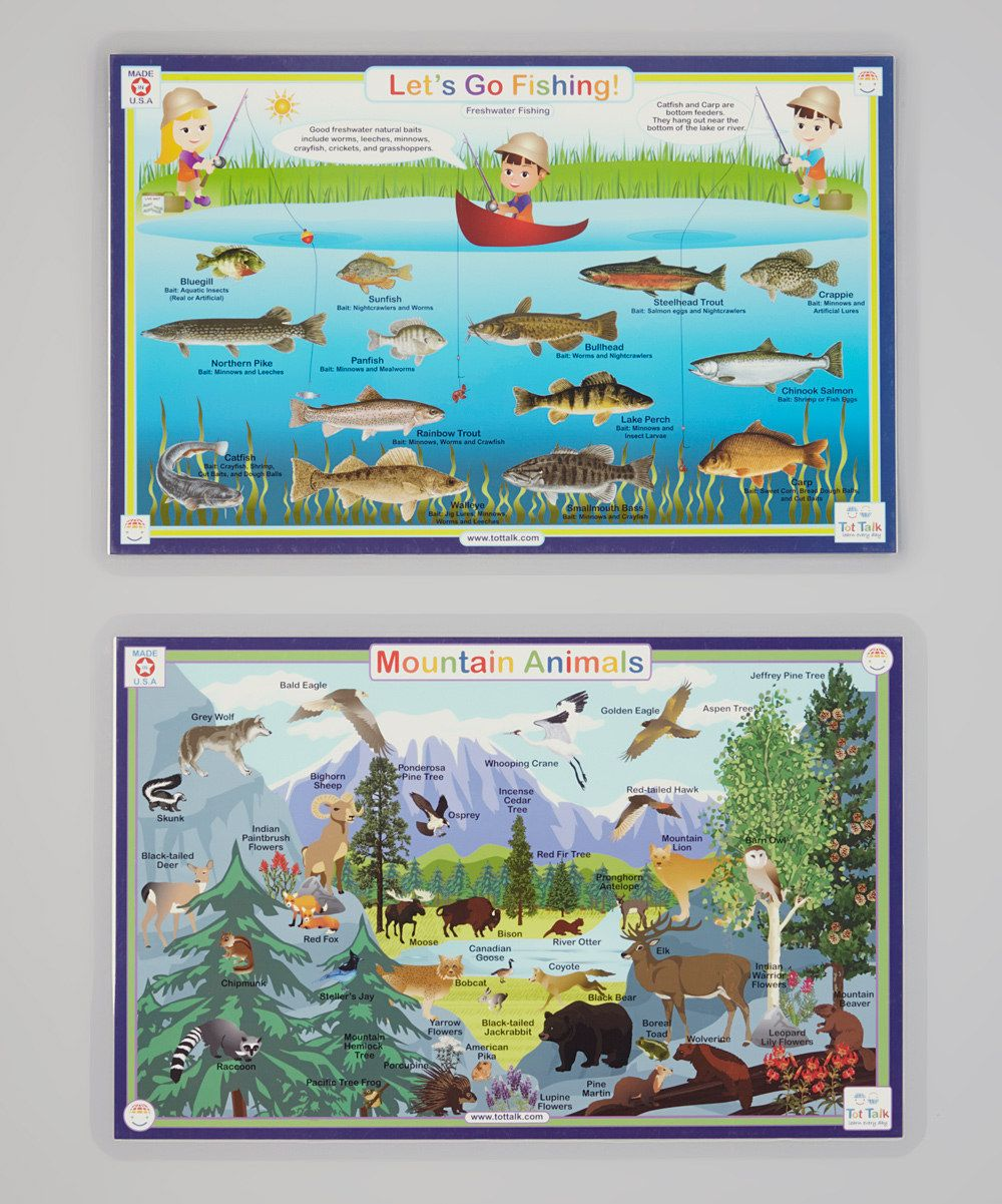 Look at this Mountain Animals & Fishing Activity Place Mat Set on #zulily today!