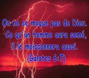 Galates 6 : 7 | Texte biblique, Citations bibliques, Biblique