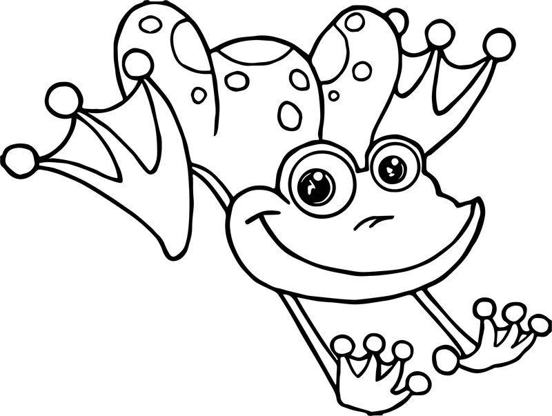 Frog Jumping Coloring Page Halaman Mewarnai Adult Coloring