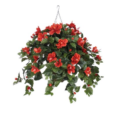House Of Hampton Faux Hibiscus Trailing Hanging Flowering Plant In Planter Flower Color Red Hanging Flowering Plants Hanging Plants Artificial Plant Wall