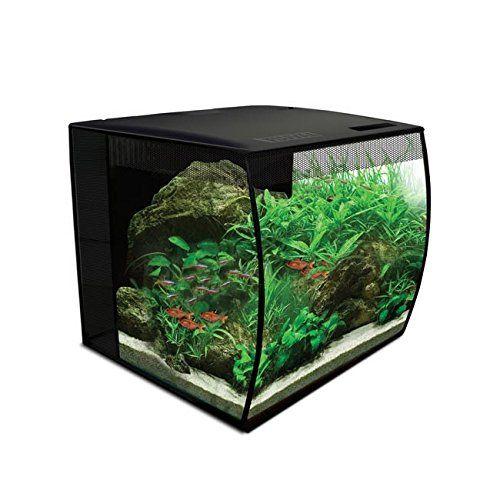 Fluval Flex 34l 9 Gallon Nano Glass Aquarium Kit Review Betta Fish Tank Aquarium Kit Aquarium