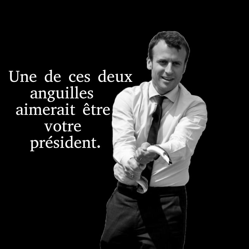 Emmanuel Macron. Un grand merci a toi, Emmanuel, qui me donne le bâton