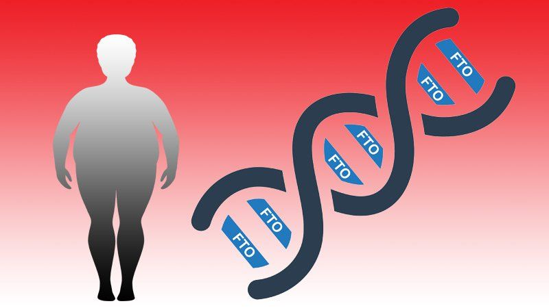 Study Results Extend Prior Work In Children And Adults With Obesity By Showing A Dose Dependent Effect Obesity Molecular Genetics National Institutes Of Health