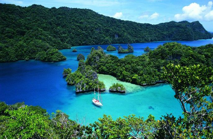 Fiji #triplegprojectdream #givegrowgain