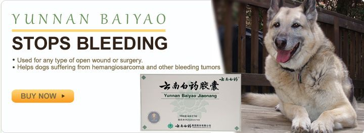 Yunnan Baiyao Chinese Herbs Yunnan Natural Remedies