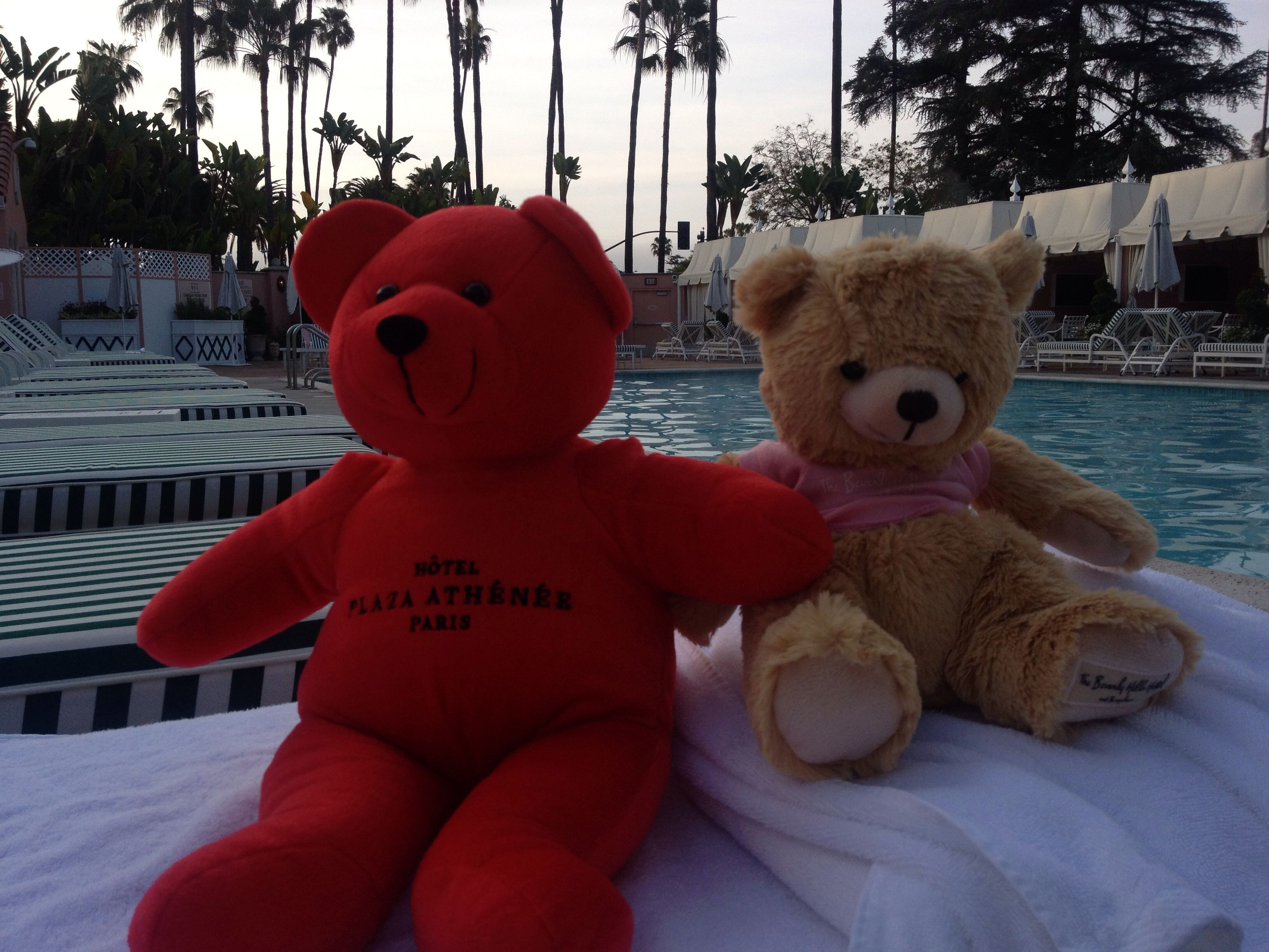Beverly Hills Hotel swimming pool