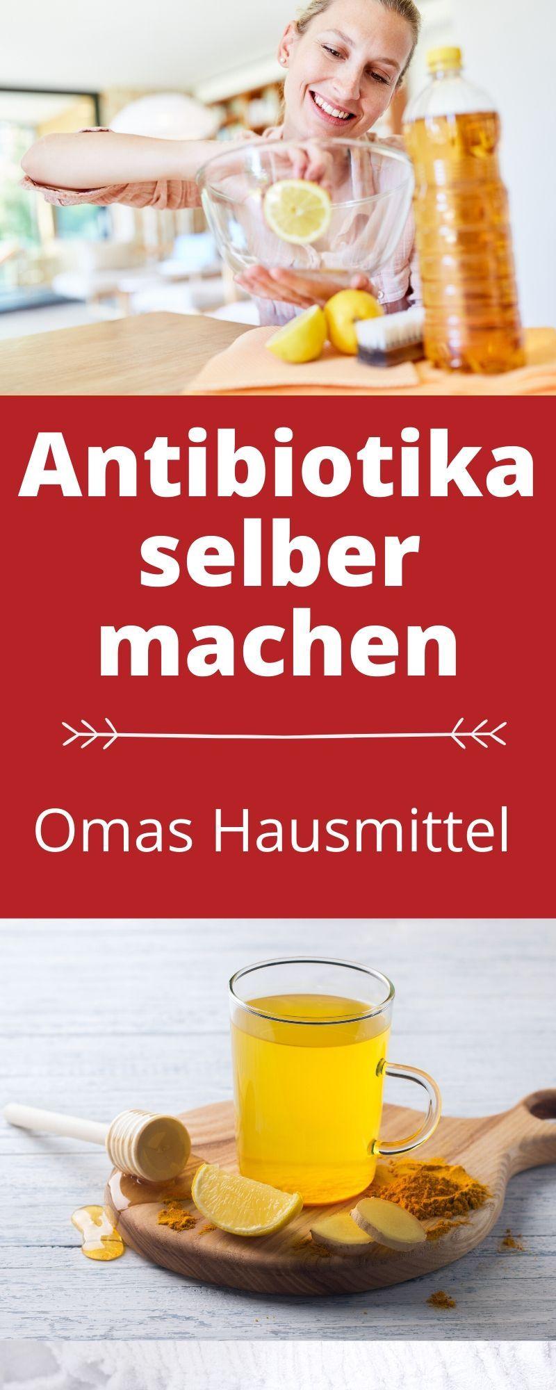 Antibiotika Selber Machen