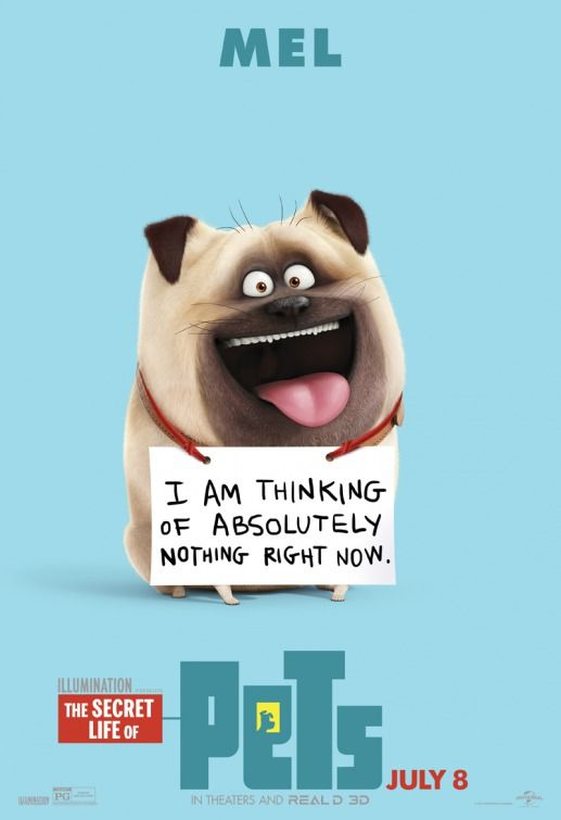 9 Adorable Secret Life of Pets Character Posters La vida