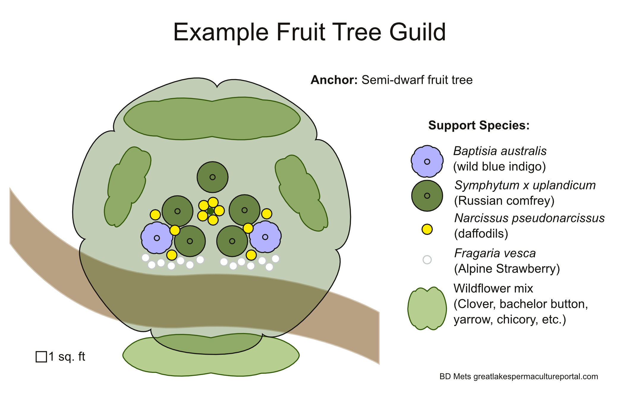 Podcast on basic fruit tree guild design garden for Garden design podcast