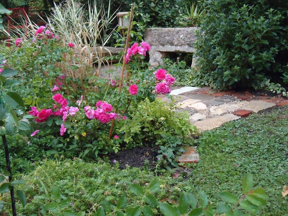 Le vieux banc de pierre dans  - banc de jardin en pierre