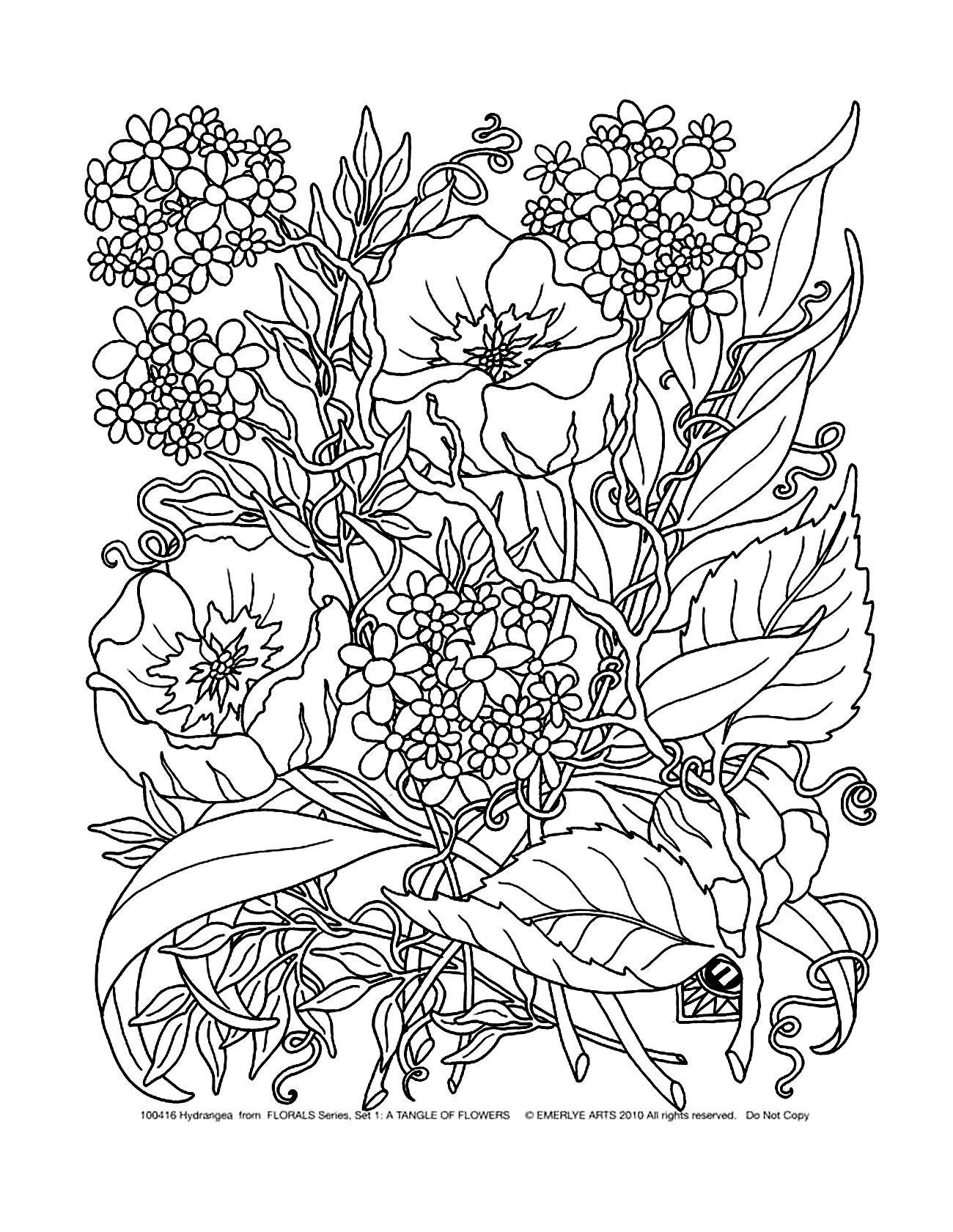 Free Coloring Page Coloring Adult Savage Flowers