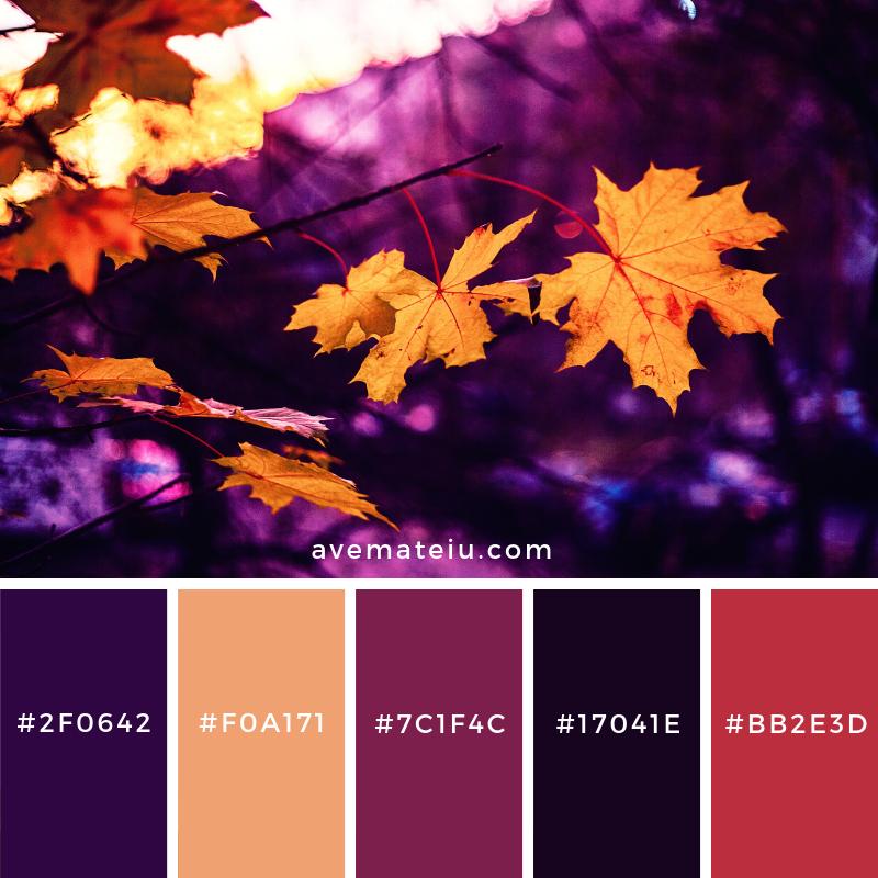 Orange Leaves Color Palette #70