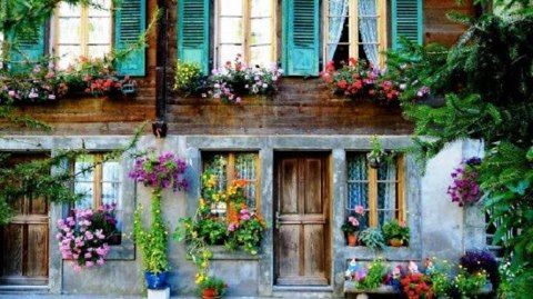 cool lookiing house with flowers