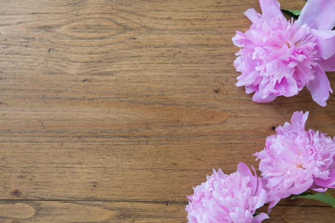 Pink Flowers On Wood Table Flower Frame Flowers Wood Table