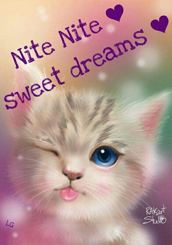 Sweet Dreams My Friend Good Night Qoutes Good Night
