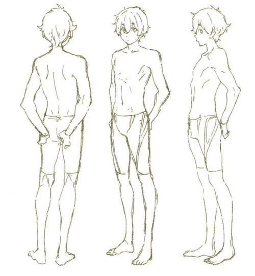anime male anatomy - 500×542