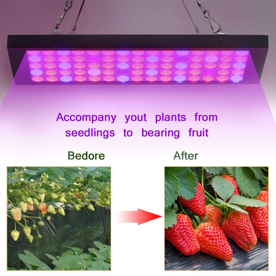Vbs 15w Lamp For Plants Ac85 265v Panel Full Spectrum Plant Light Led Grow Light For Indoor Seedling Blooming Fruiti Led Grow Lights Grow Lights Plant Lighting