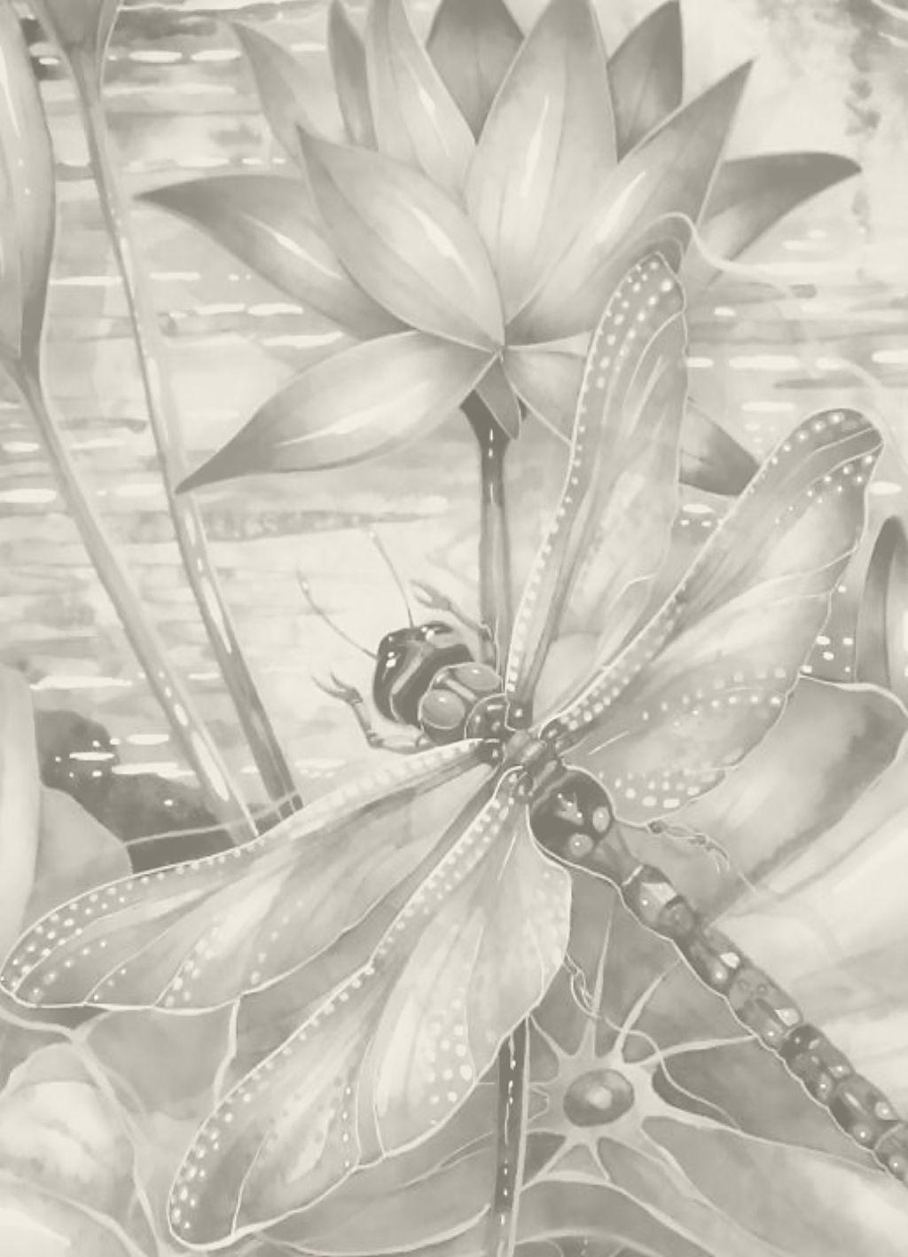Alle Zwart Wit Platen Zijn Goed Uit De Printen Op 13 18 Cm Bloemen Tekenen Dierentekening Libel