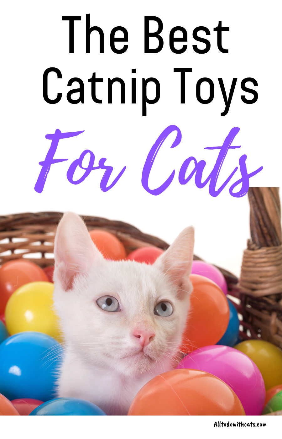 The Best Catnip Toys For Cats Your Kitty Will Love In 2020 Cat Toys Catnip Toys Pet Care Cats