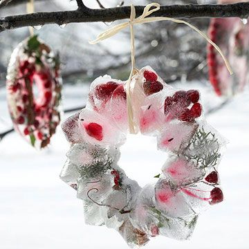 Ice Wreath, what an awesome idea!! Also fun for a surprise gift!