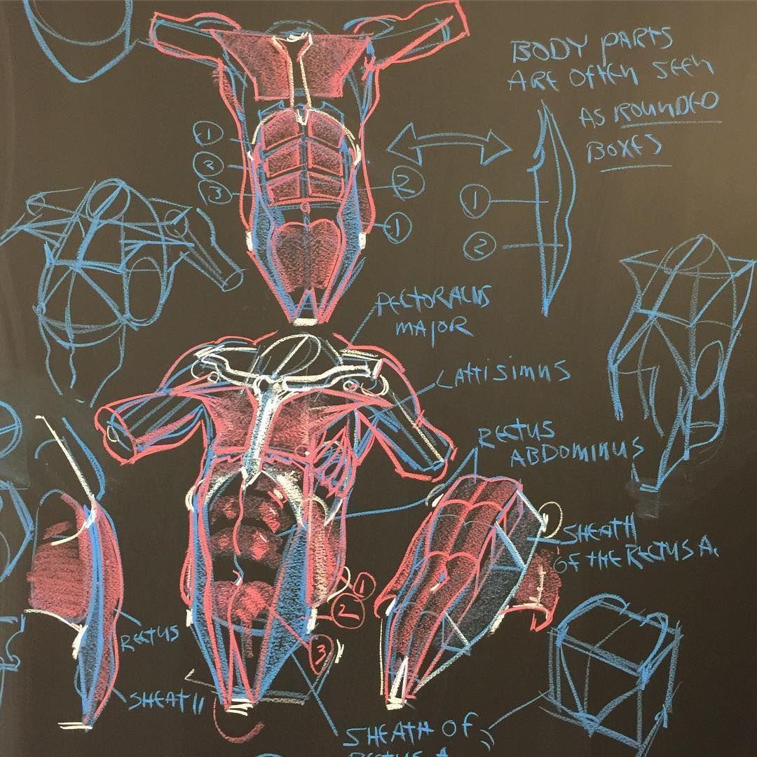 Новости | Анатомия | Pinterest | Zeichnungen