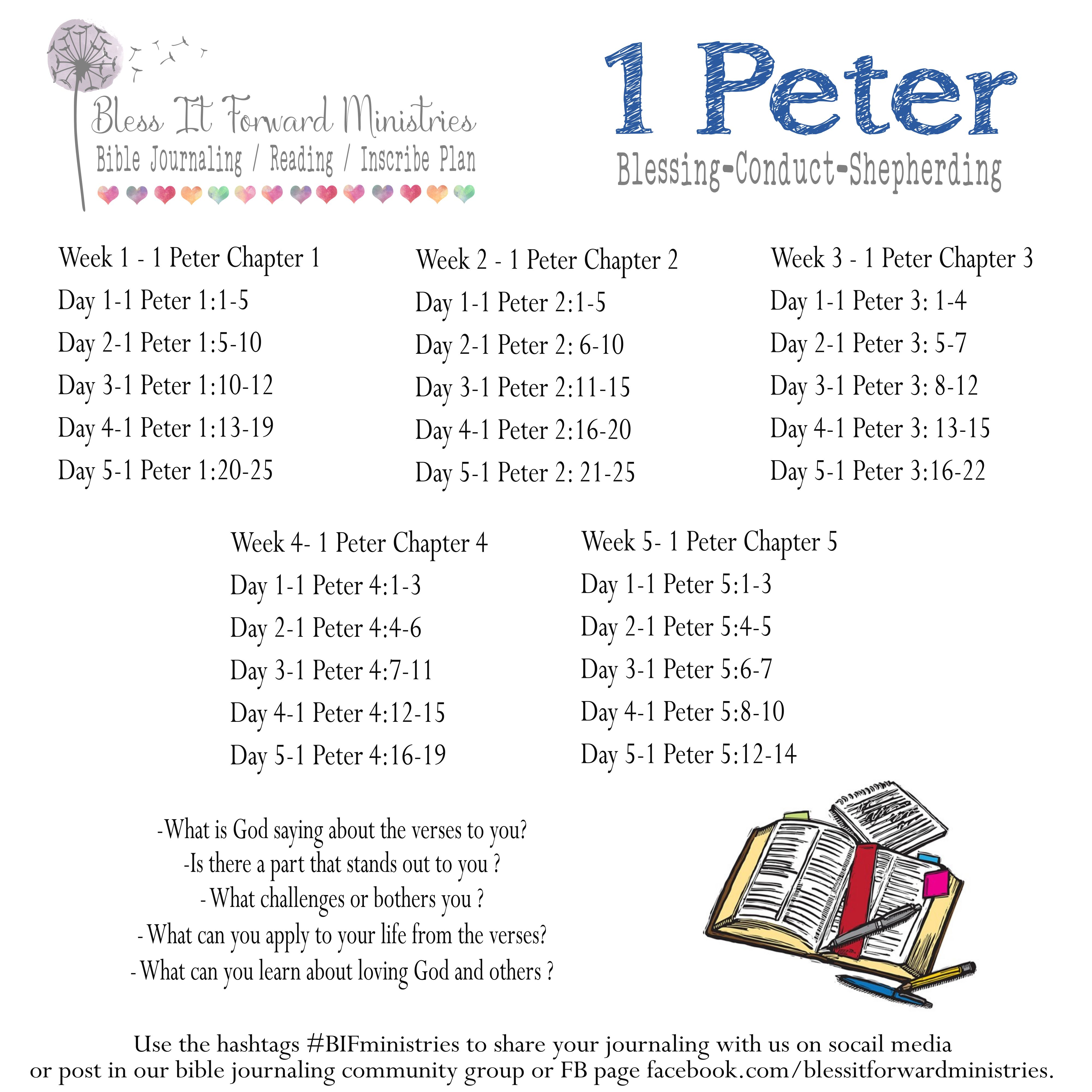 A new book of the bible plan available to download for