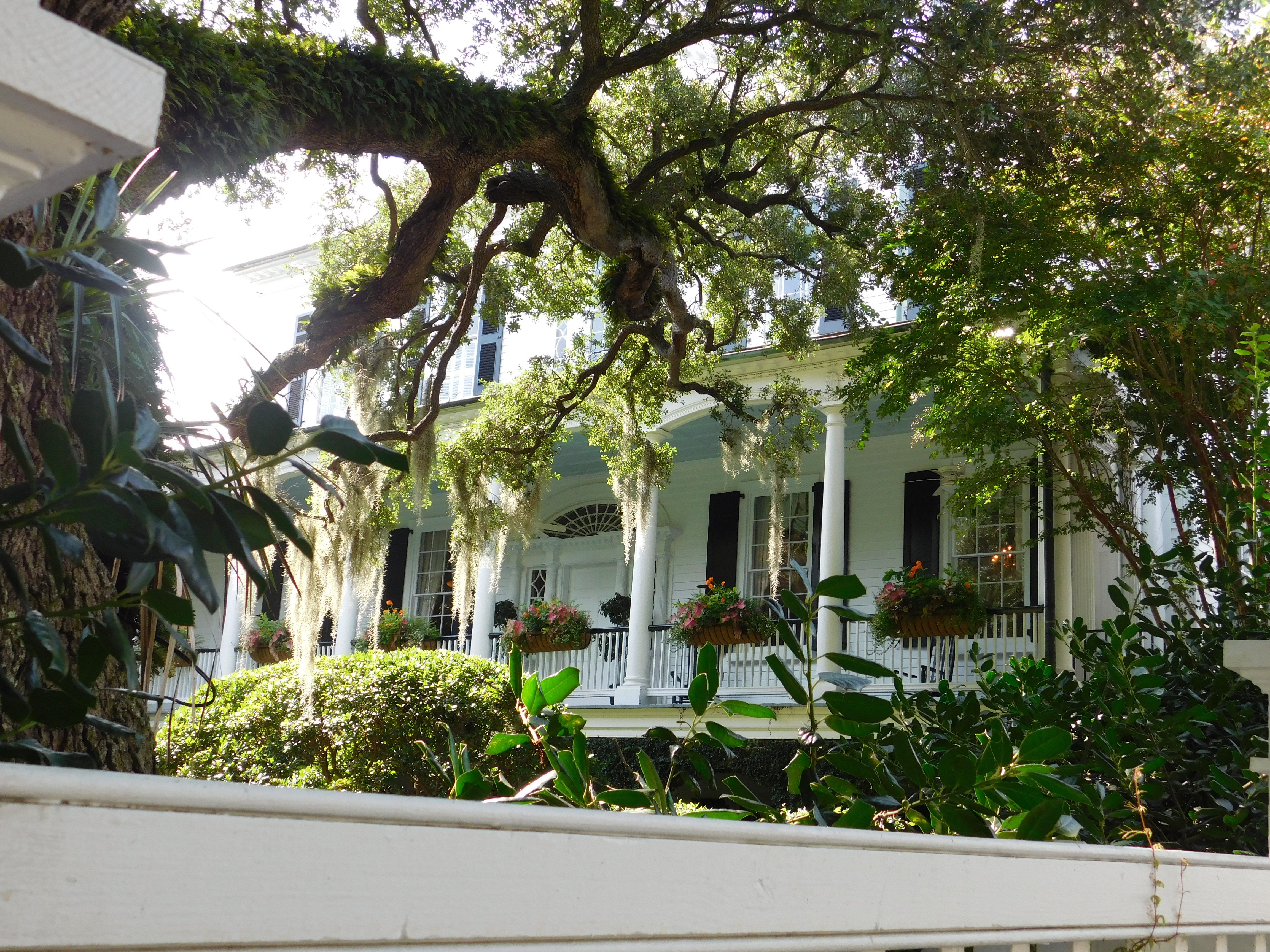 The Governor Thomas Bennett House 1825 Charleston Sc 8 15 Thomas Bennett House Antebellum Architecture