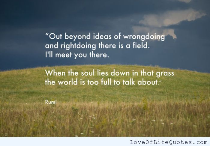 Out beyond ideas of wrongdoing and rightdoing - http://www.loveoflifequotes.com/uncategorized/out-beyond-ideas-of-wrongdoing-and-rightdoing/