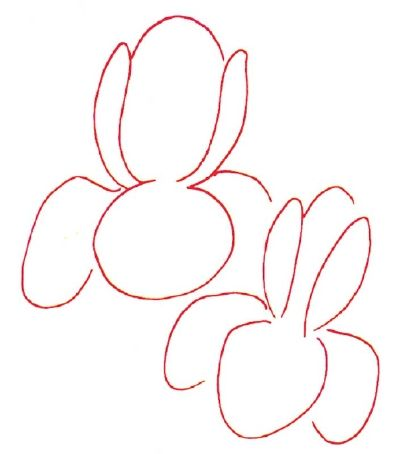 How To Draw An Iris In 5 Steps Flower Drawing Iris Drawing Iris Painting