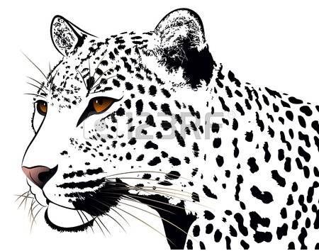 katze tattoo: Leopard, tattoo   Malvorlagen Acryl   Pinterest ...