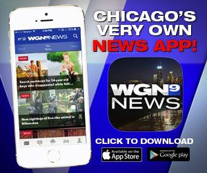 Click here to download the WGN News app Egg harbor