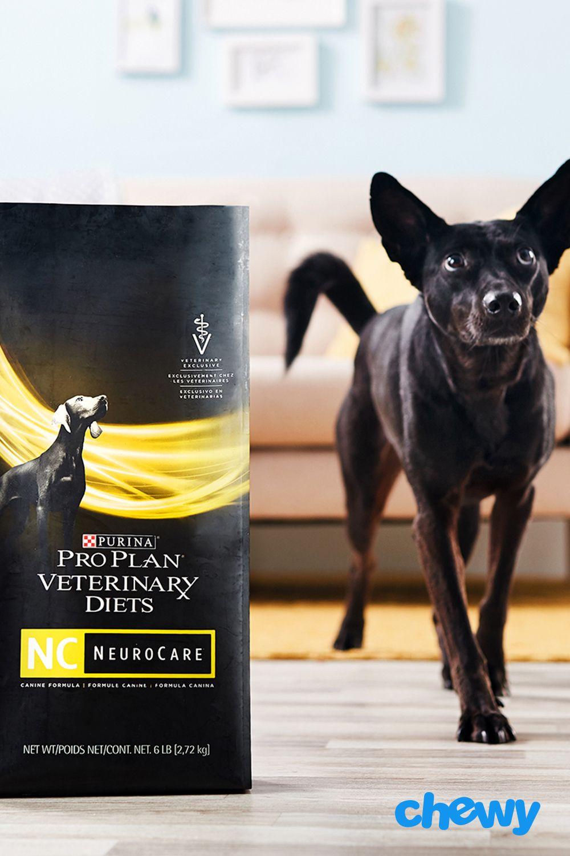 Purina Pro Plan Veterinary Diets Neurocare Dry Dog Food 11 Lb Bag Chewy Com Dry Dog Food Purina Pro Plan Purina