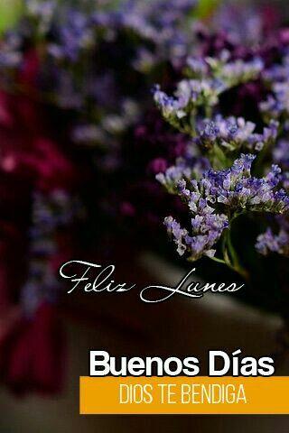 spanske citater Pin af Josie Garcia på Spanish information/quotes and more | Pinterest spanske citater