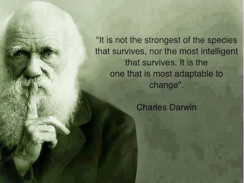 What S Hot Google Darwin Quotes Charles Darwin Quotes Wisdom Quotes