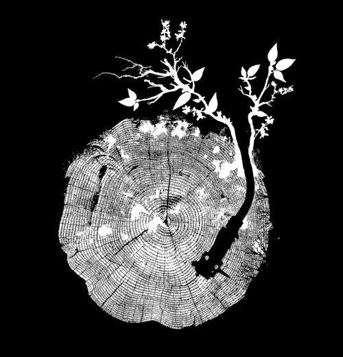 Natures Choir - Budi Satria Kwan