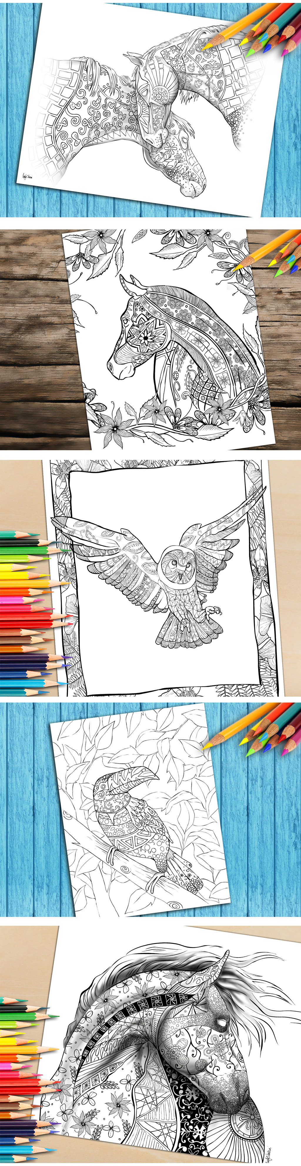 What colors would you use to color these beautiful animals download