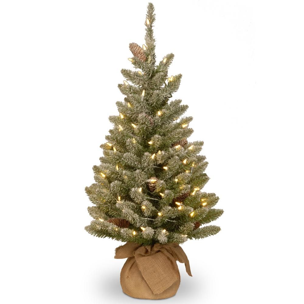National Tree Company 36 In Snowy Concolor Fir Tree With Battery Operated Led Lights Sr1 328 30 B1 The Home Depot Small Artificial Christmas Trees Pre Lit Christmas Tree Fir Christmas Tree Small pre lit outdoor christmas trees