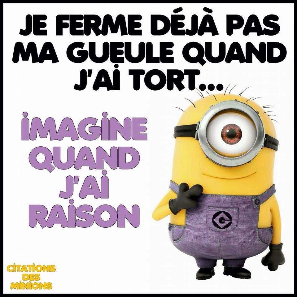 Citation Minions Humour Pinterest Citation Dr 244 Le Et Citations Dr 244 Les