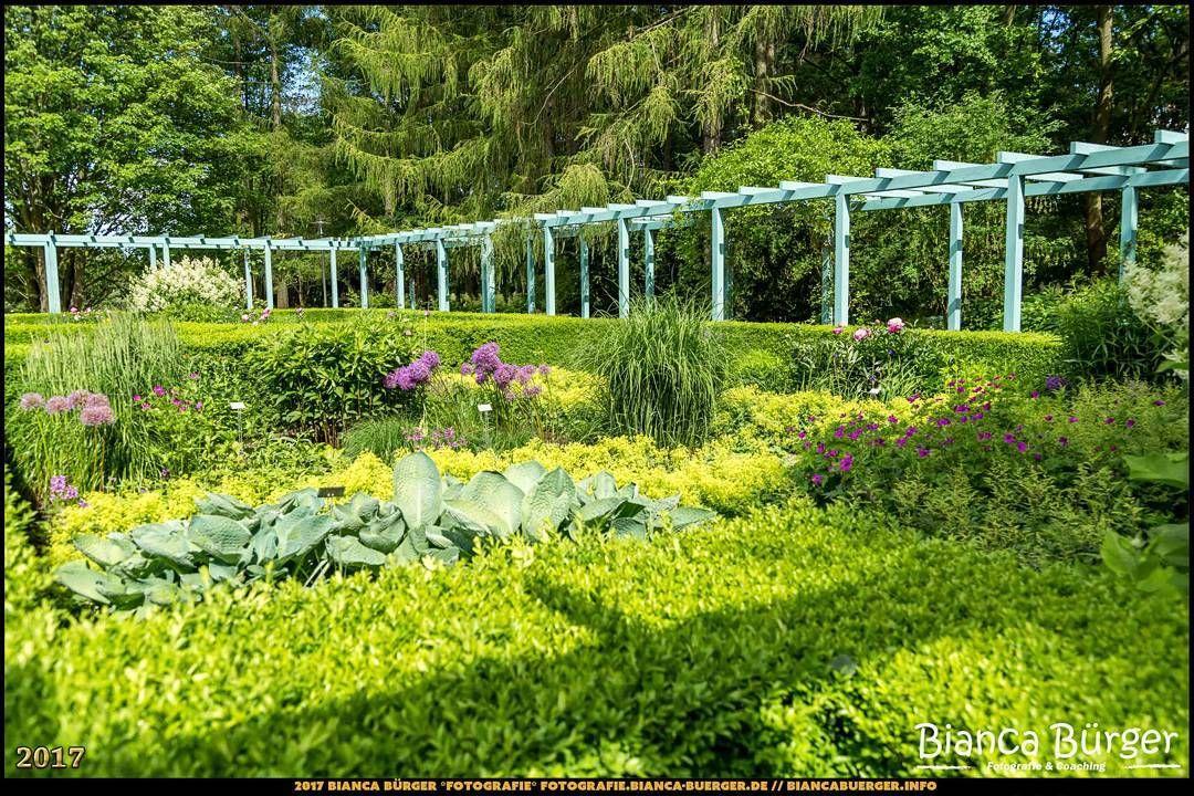 Mein Selbstversorger Garten Am Stadtrand Permakultur Auf Kleiner Flache Amazon De Kurt Forster Bucher Selbstversorger Garten Permakultur Garten