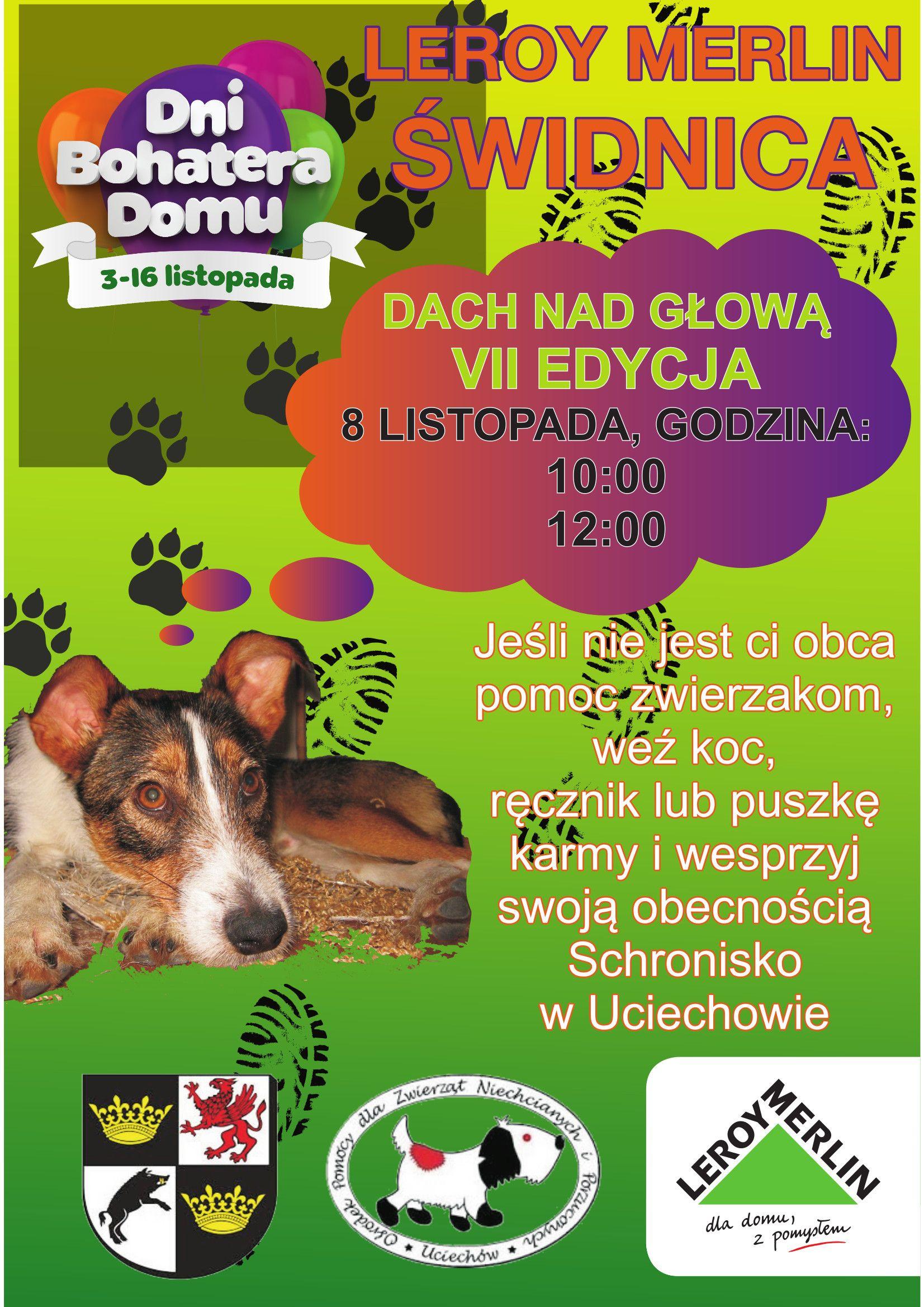 Weekend Akcja Schronisko Pomoc Prezenty Psy