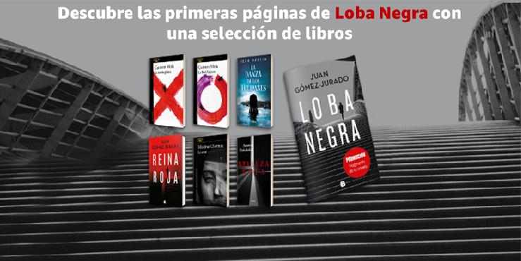 Libros Amazon Es Libros Libros En Espanol Libros Ilustrados