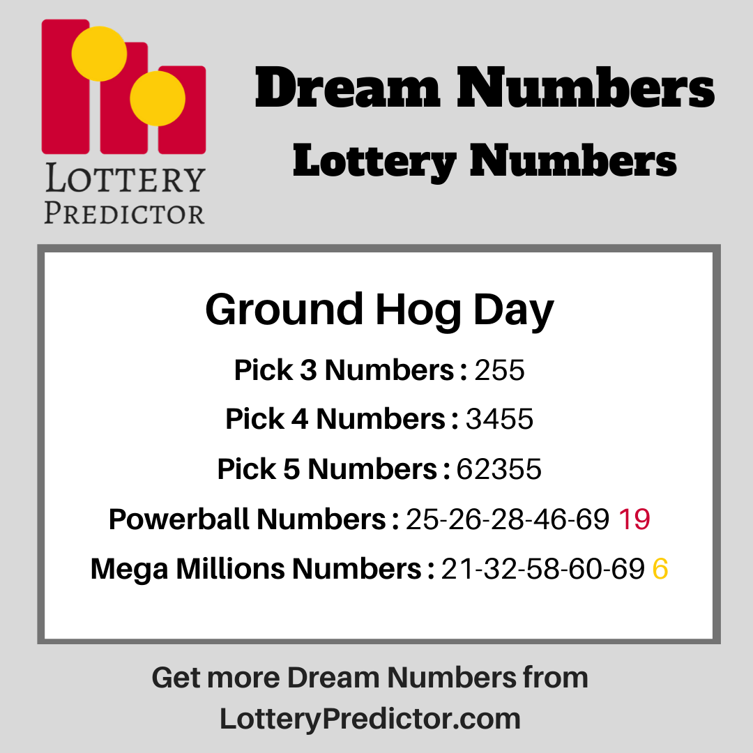Dream Lottery Numbers For Ground Hog Day Lottery Dreamnumbers