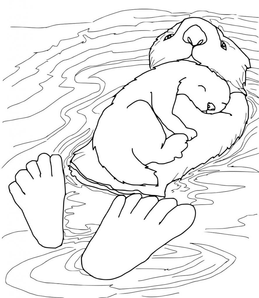 Otter Coloring Pages - Best Coloring Pages For Kids  Baby