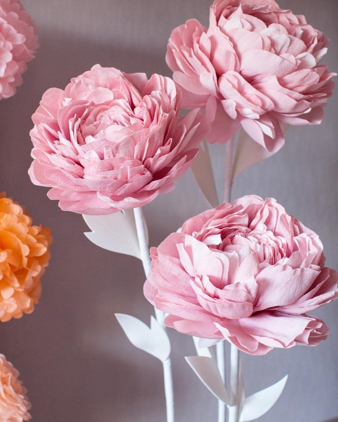 из каких салфеток делать цветы пионы фото некоторых армиях