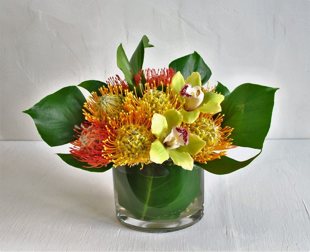 Protea Bowl Several Varieties Of Pincushion Protea Are Arranged Alongside Cymbidium Orchids To Highlig Flower Subscription San Francisco Florist Monstera Leaf